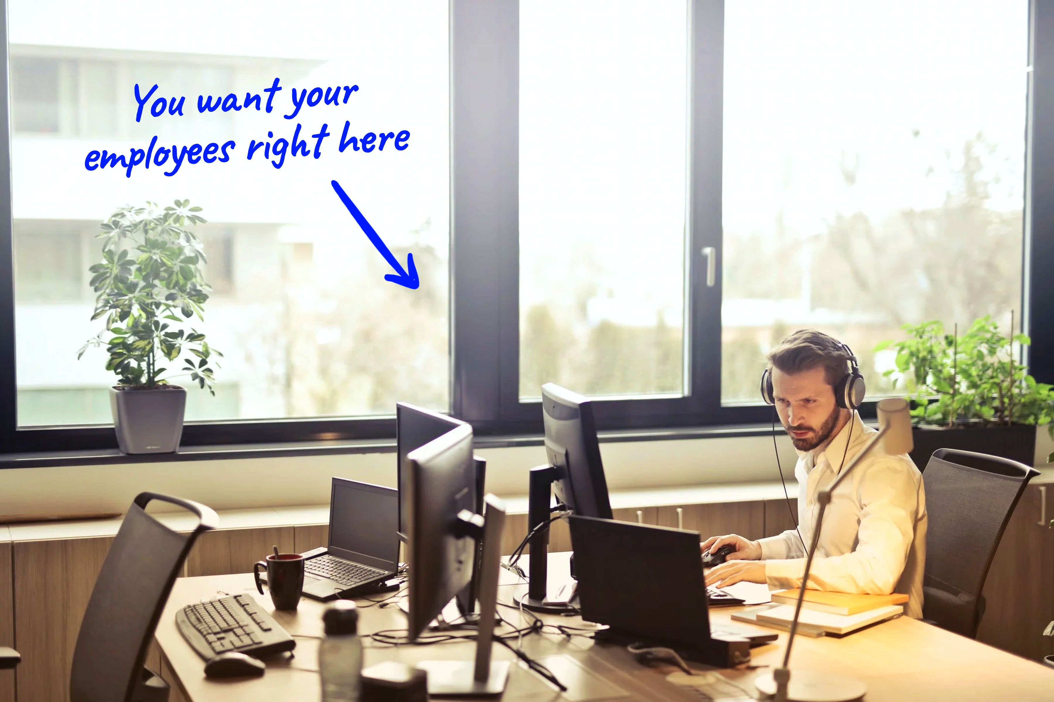 customer support team member working in an office
